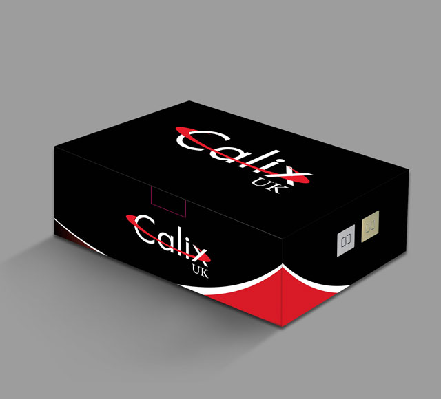 Calix UK Switch box